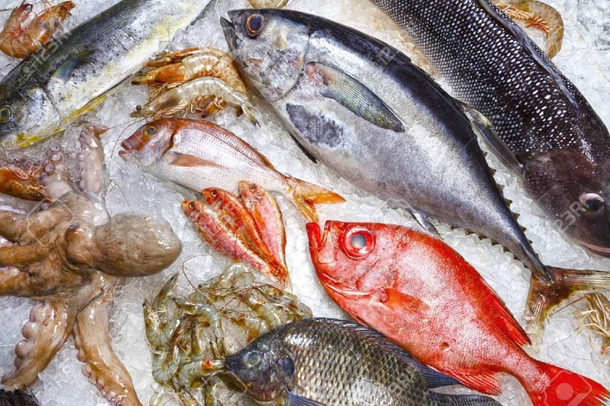 básculas contra agua para carnicería y pescadería